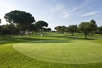 Golf Clubs in Lafayette - Things to Do In Lafayette